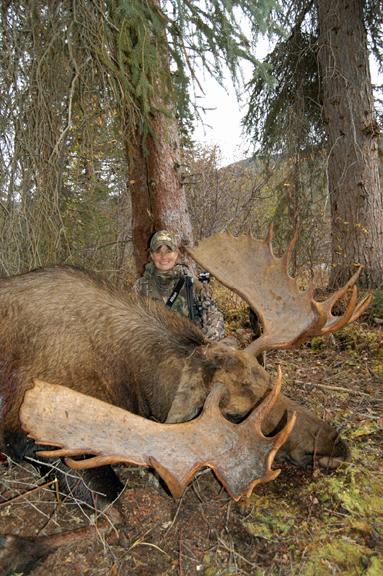 Dangerous Game - Moose at Webber's Lodges