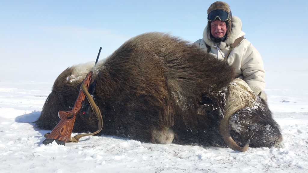 Weston Millward with his Musk Ox.