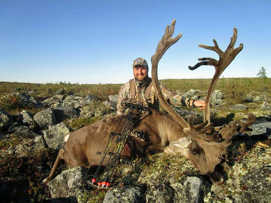 Caribou bow hunt results in beautiful bull